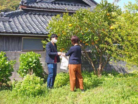 hamagamitei jichinsai yura-11